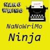 NaNo NiNja