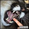rynicons userpic