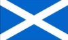 st. andrew's flag