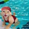 Swim.pool
