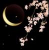 dreamerofchange userpic