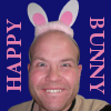 happy bunny, happy