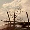 breezyhorizons userpic
