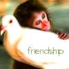 Friendship - Monkey Hug