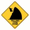 Falling Cow Zone