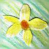 redoren userpic
