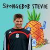 stevie squarepants