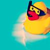 scuba duckie