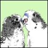 a_dead_bird userpic