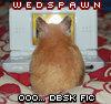 wedspawn ♥