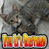 wendsh userpic