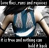 love flies