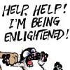 Bucky - Englightened