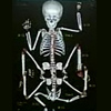 pygopagus userpic