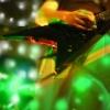 stelluci: Guitar