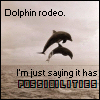 tobiasthehawk: Dolphin Rodeo is love.