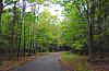 sinkwriter: 2006 Fish Creek walking path