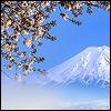 Mt. Fuji: serenemoonlight