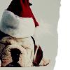 auntpurl: xmas doggie 2