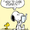 Little Red: peanuts - cure stupidity