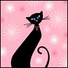 Ruth: Cat