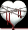 Barbed Wire Heart Bleeding