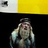 hp - dumbledore
