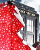 DW - Christmas Tardis