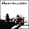 blueraccoon