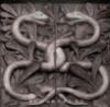HPCover-Snakes