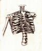 xylophone_bones userpic