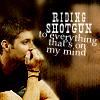 riding shotgun to everything that's on m