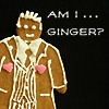 dameruth: ginger