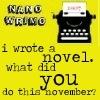 NaNo November