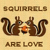 for the love of squirrels!