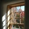 Window in Fall