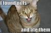 speed, drugs, pills