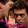 John: Gay Whispers SF/HL