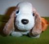 Marm: hush puppy