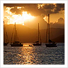 nausicaa_abroad userpic
