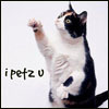 Fritters: Cat - I Petz You by mysticmirth
