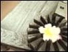 kichrysanthemum userpic