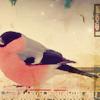 isaidyourname userpic