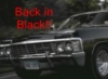 panns: impala