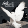 &i_bird