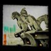 untamedmindx userpic