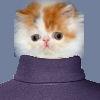 postfrinklecat userpic