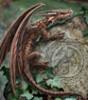 dragon_spyro: дракошка на камне