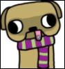 Wintertime pug