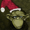 Diary of an Ass Monkey: amd: xmas serious